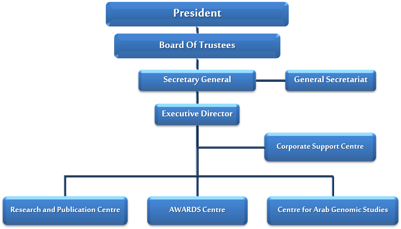 Hamdan Medical Award Organizational Chart